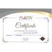 Автомобильный аккумулятор PLATIN Premium MF 62Ah 640A L+
